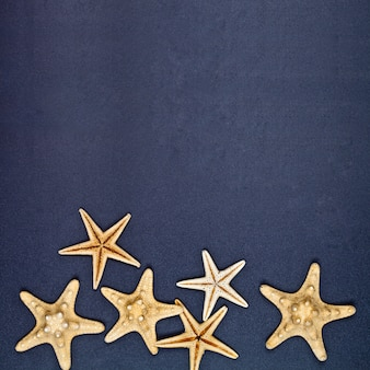 Top view of six starfish on black background.