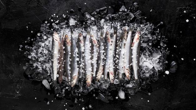 Vista dall'alto di piccoli pesci sopra cubetti di ghiaccio