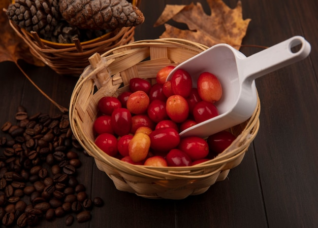 Top view of small pale red cornelian fruits on a bucket with pine cones on a bucket with golden yellow leaves and coffee beans isolated on a wooden surface