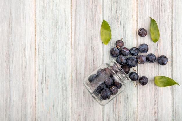 Top view of the small sour blue-black sloes falling out of a glass jar with leaves on a grey wooden background with copy space
