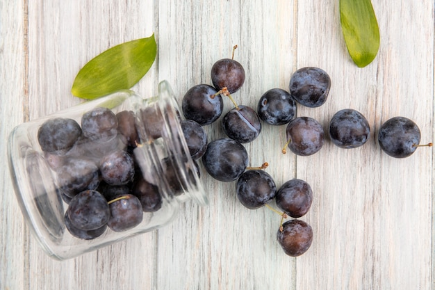Top view of the small sour blue-black sloes falling out of a glass jar with leaves on a grey wooden background