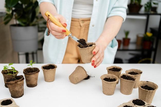 식물을위한 평면도 토양