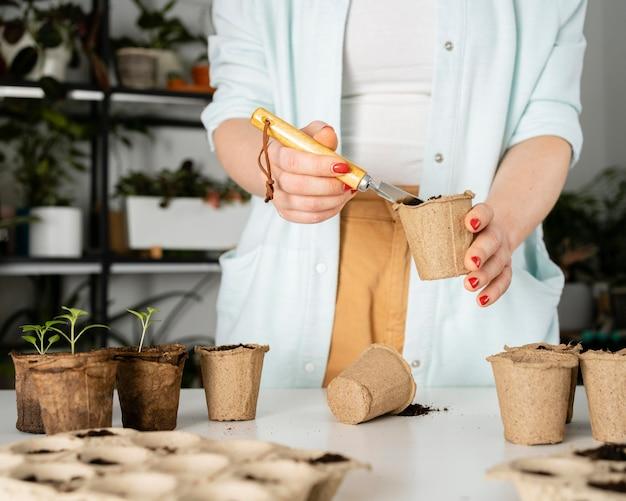植物の上面図土壌