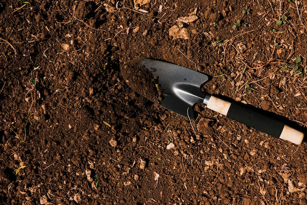 Top view spade on the ground