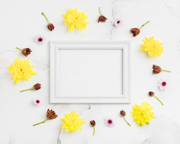 Top view of spring daisies and frame with marble background