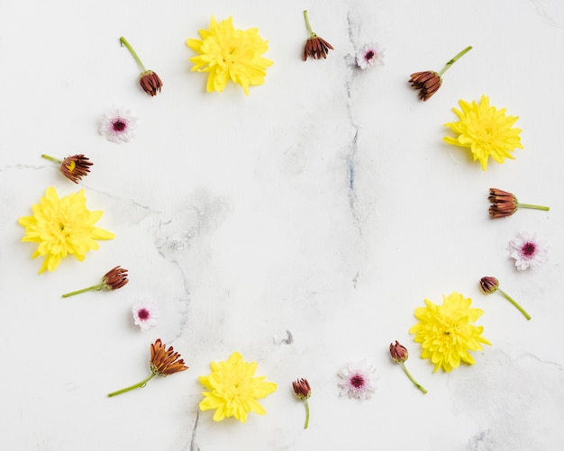 Top view of spring daisies with marble background