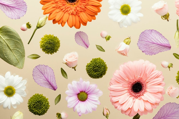 Top view of spring gerbera flowers with daisies and leaves