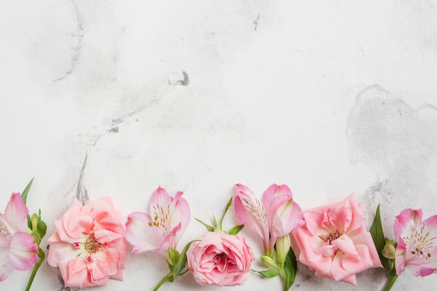 Top view of spring roses and orchids with marble background and copy space