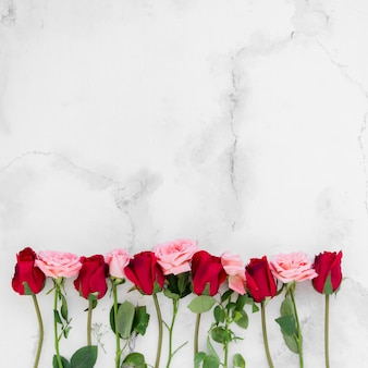 Top view of spring roses with copy space and marble background