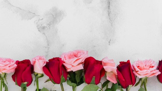 Top view of spring roses with marble background