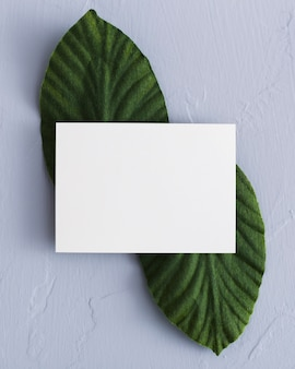 Top view stationery business card concept
