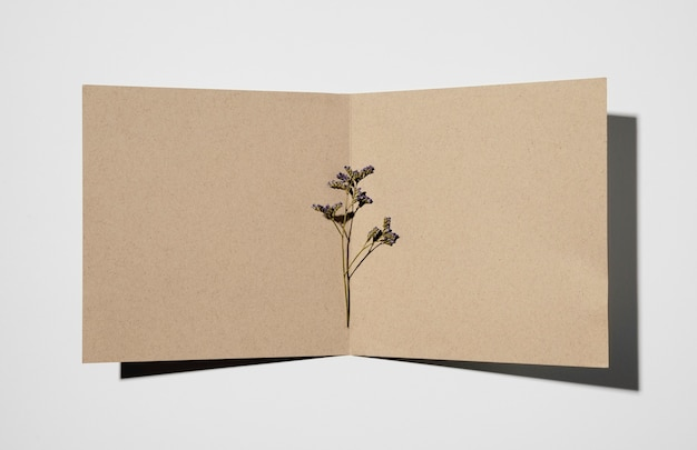 Top view of stationery paper with plant