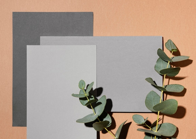 Top view of stationery paper with plants