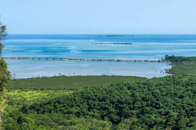 Top view of stunning gradient blue sea main road between sea and a lush magrove forest
