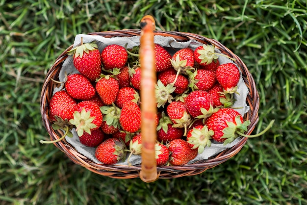 Top view tasty strawberry basket