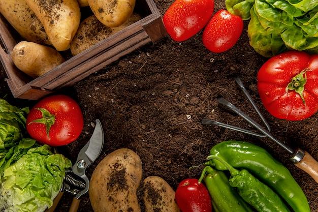 Vista dall'alto di pomodori con patate e verdure