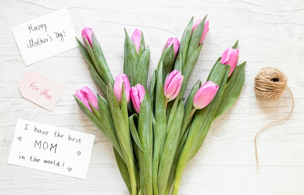 Tulipani vista dall'alto e disposizione del filo