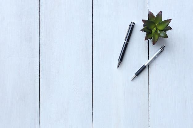 상위 뷰 흰색 나무 바닥에 두 개의 펜 및 화분 및 복사 공간이 있습니다.