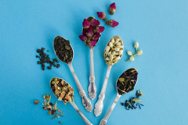 Top view of varieties of tea in the silver spoons on the blue