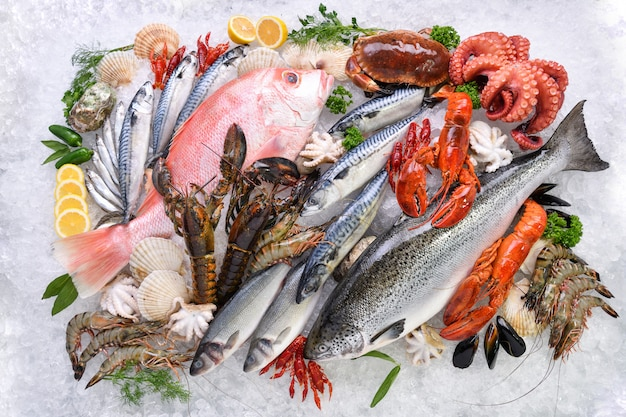 Premium Photo   Top view of variety of fresh fish and seafood on ice