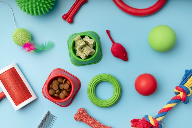 Top view on various colorful pet accessories still life concept