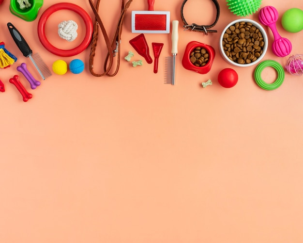 Top view on various pet accessories still life concept