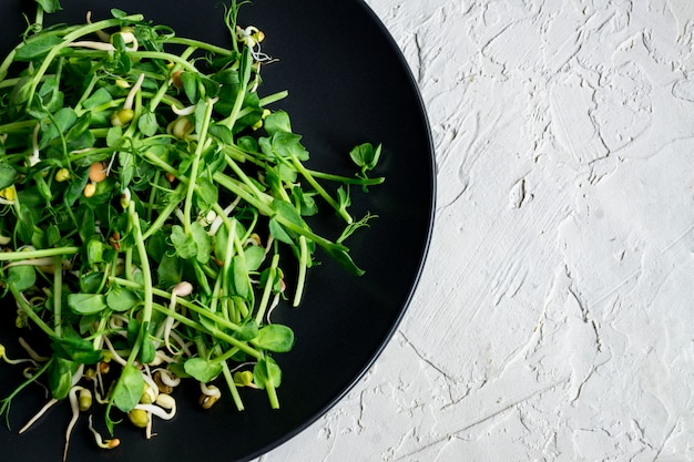 Top view of vegan healthy salad made of peas microgreen sprouts and sprouted beans