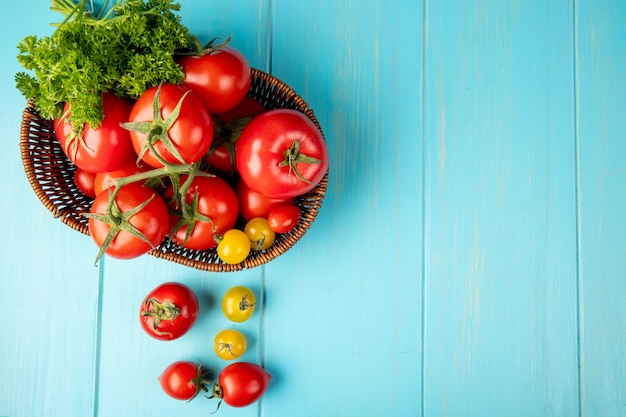 Top view of vegetables as coriander and tomato in basket on left side and blue surface with copy space