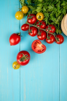 Top view of vegetables as coriander and tomatoes on blue with copy space