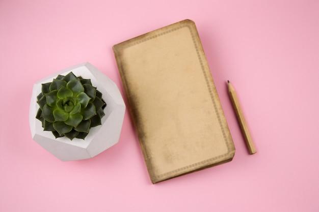 Top view vintage paper notebook, pencil and succulent in concrete pot