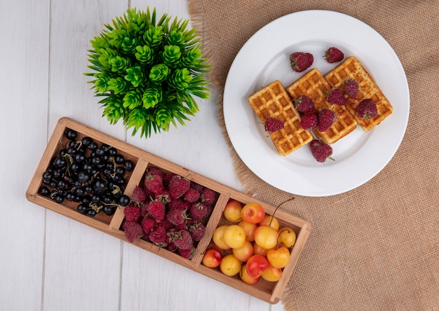 라스베리 흰색 체리와 흰색 테이블에 검은 건포도와 접시에 상위 뷰 와플