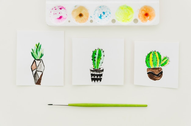 Top view watercolor cactus drawings