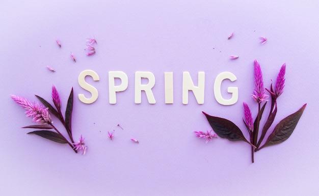 평면도, 봄에 오신 것을 환영합니다.