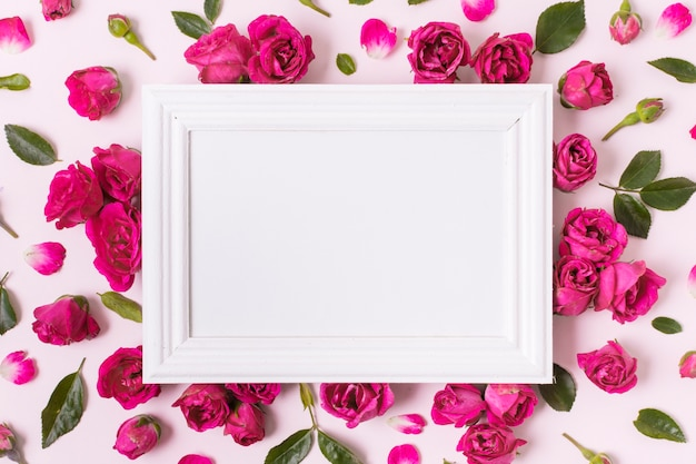 Top view white frame surrounded by roses