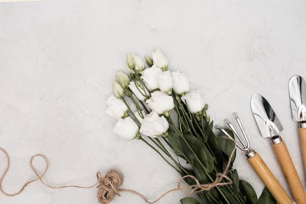 Vista dall'alto rose bianche e attrezzi da giardinaggio con corda