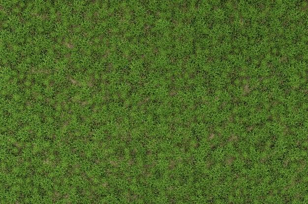 Top view of wild grass - 3d rendering