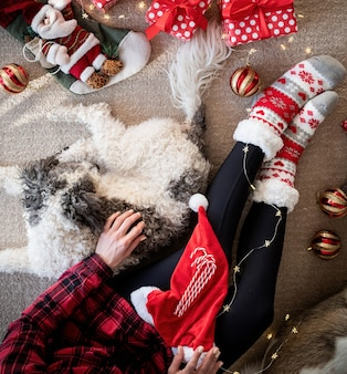 Top view of woman in funny socks celebrating christmas with her dog