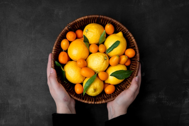 Top view of woman hands holding basket of citrus fruits as lemons and kumquats on black surface