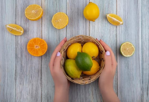 上面図の女性は、バスケットにライムと灰色の背景にオレンジスライスとレモンを保持します。