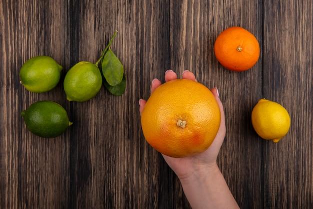 나무 배경에 오렌지 레몬과 라임 자몽을 들고 상위 뷰 여자