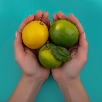 Donna di vista superiore che tiene nelle mani limette con limone su uno sfondo turchese
