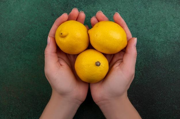 Donna di vista superiore che tiene i limoni nelle sue mani su priorità bassa verde