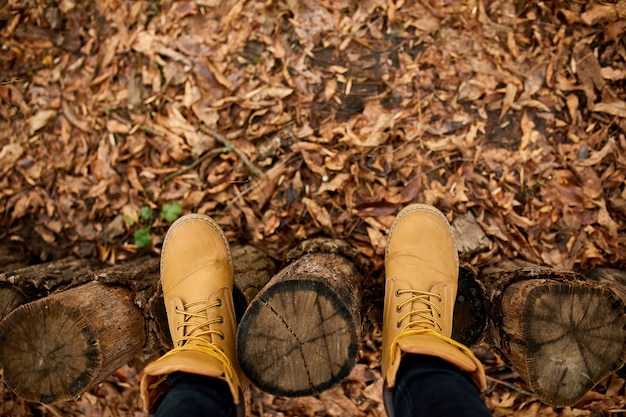 紅葉と木の上のハイキング山のブーツと立っている上面図の女性