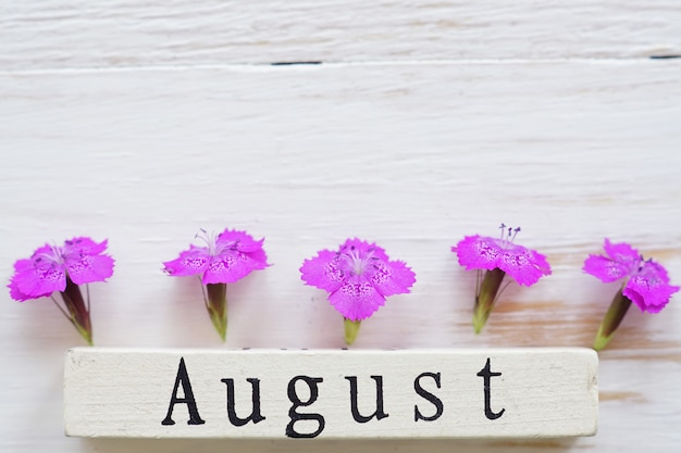 Top view of wooden calendar with august sign and pink flowers.