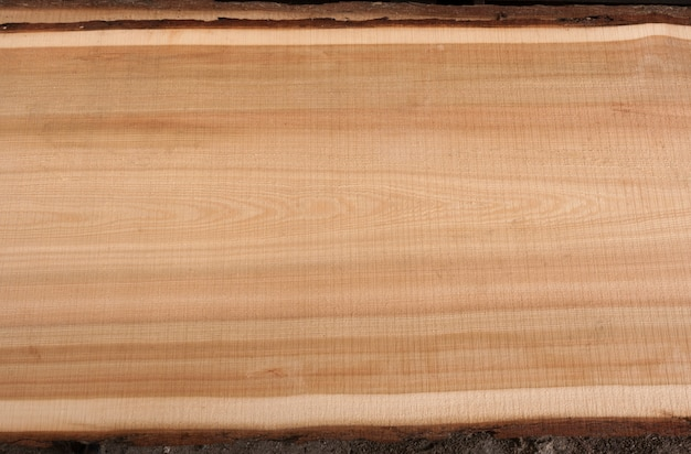 Top view on wooden texture larch slab with bark.