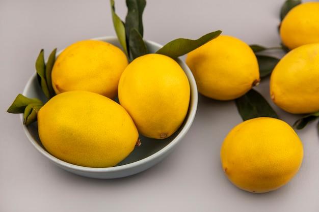 Vista dall'alto di limoni di agrumi gialli su una ciotola su un muro bianco
