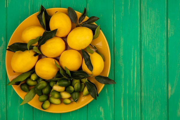 Top view of a yellow dish of fresh citrus fruits such as lemons and kinkans on a green wooden wall with copy space