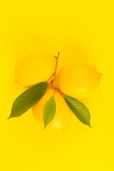 A top view yellow fresh lemons fresh ripe with green leaves isolated on the yellow background citrus fruit color