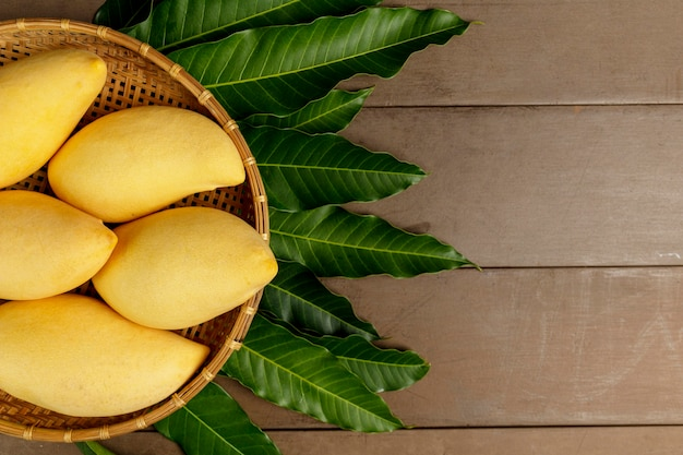 Top view yellow fresh mangos on real wood table.