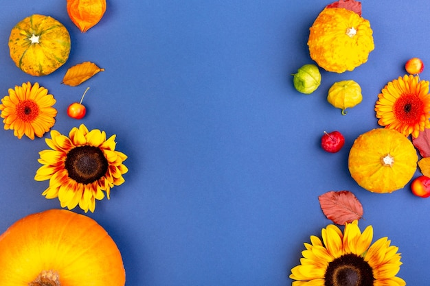Top view of yellow and orange flowers and pumpkins on blue surface with copy space